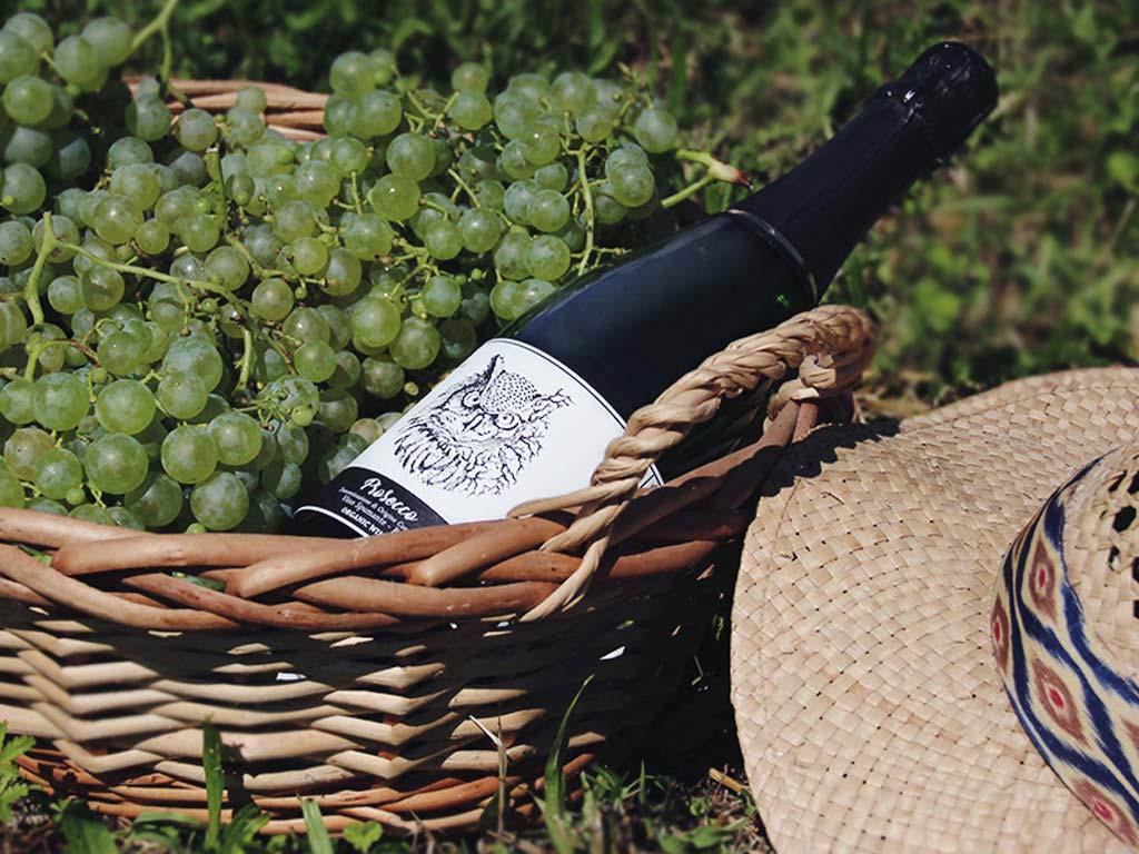 Fidora Wild Nature vineyards Prosecco