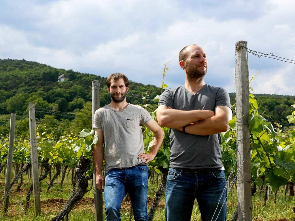 Weingut Georg en Martin Fußer Niederkirchen Pfalz Deutschland
