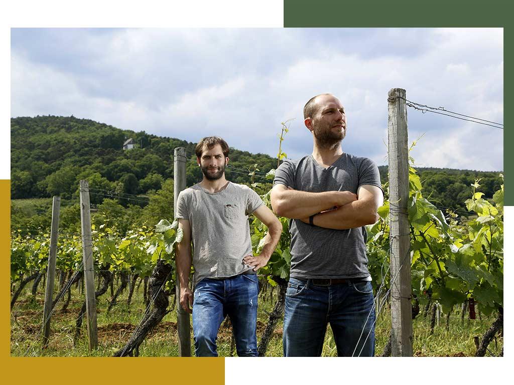Wijnmakers Georg en Martin Fußer